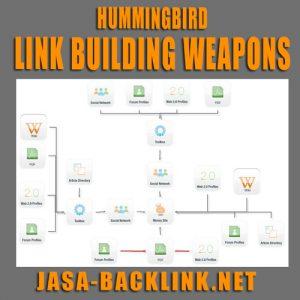 Link Building Untuk Hummingbird